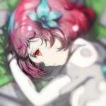 SkyEcho