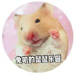 Fairy兔叽